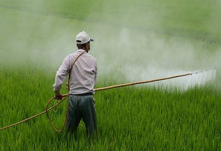 Industry Urges Government to Reappraise Pesticides Management Bill