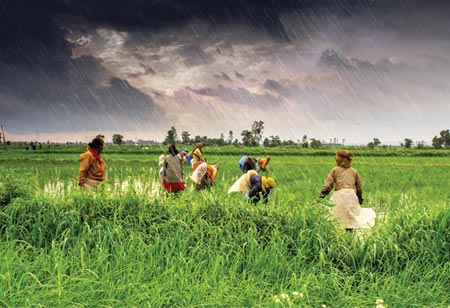 Fighting Climate Change And Environmental Issues In India