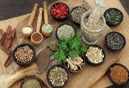 Export Promotion Council on the Anvil to Boost Export of AYUSH Products