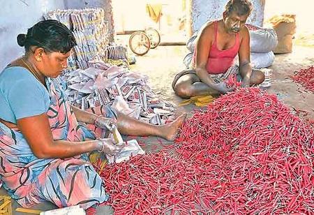 28 Cracker Manufacturing Units Sealed in Virudunagar