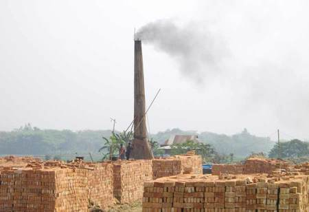 TN has closed 186 illegal brick kilns along Western Ghats, govt informs Madras HC
