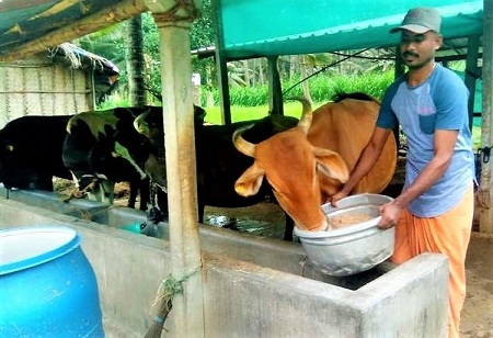 Rural Dairy Farmers in the State to Get 25,000 Shelters for Cows and Goats